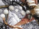 Ursula Mehler (D): Im Winter