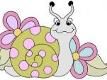 snail flower