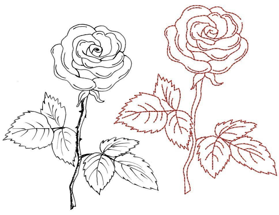 Rose Bernina Blog