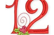 12-Bild