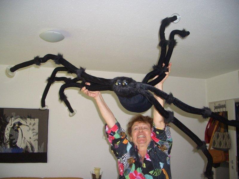Gloria und die Spinne Foto: j. Briehn