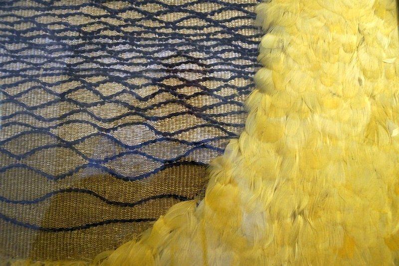 Das goldene Ei, Detail