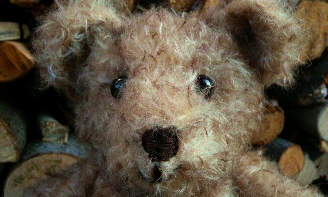 Heidemaries Teddy 1