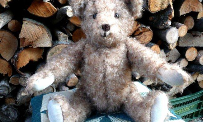 Heidemaries Teddy 4