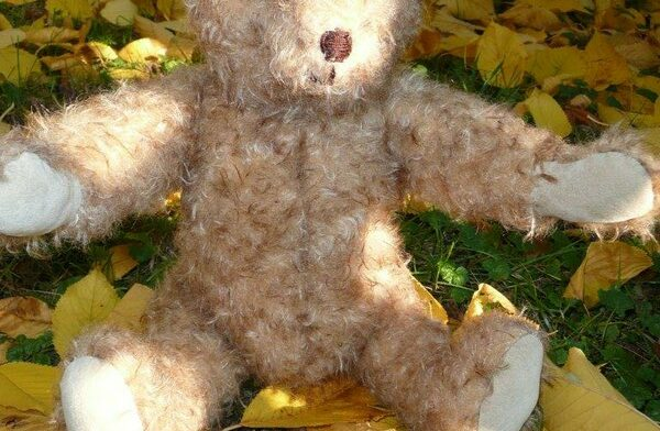 heidemaries teddy 2