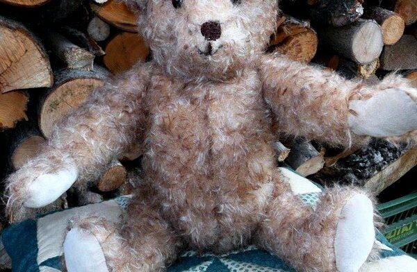 heidemaries teddy 3