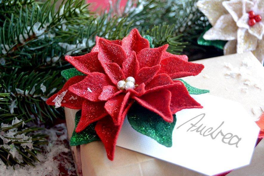 Weihnachtsstern2a