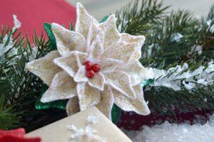 Weihnachtsstern3