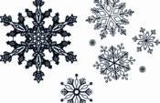Winter Lace Designs