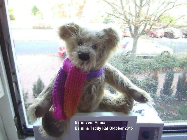 BERNINA-Mitmachaktion 2015. Wir nähen einen echten Mohiarteddy: die Teddyparade