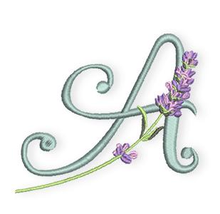 Lavendel-Alphabet-A