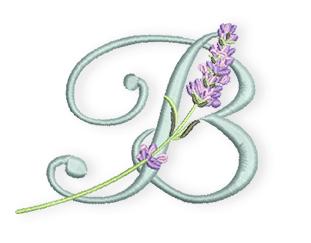 Lavendel-B