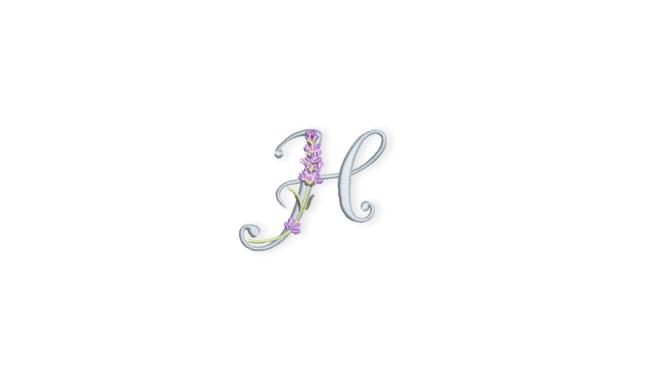 Banner-Lavendel-ABC-H