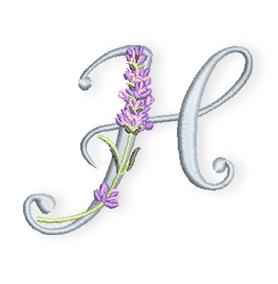H-Lavendel-ABC