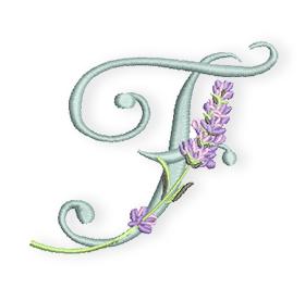 Lavendel-F