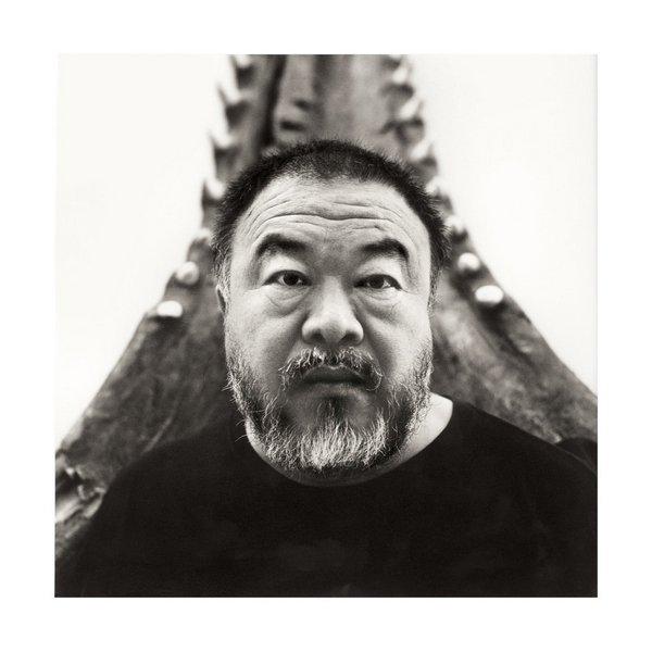 Ai Weiwei, 2016 © Belvedere, Wien