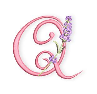 Lavendel-ABC-Q