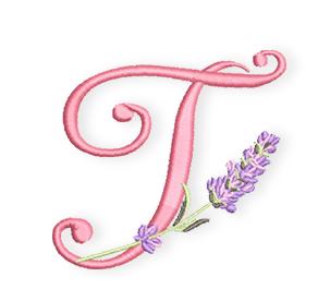 Lavendel-ABC-T