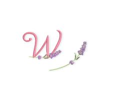 Banner-Lavendel-ABC-W