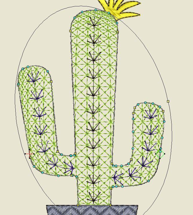 Kaktus 4 Kugeleffekt