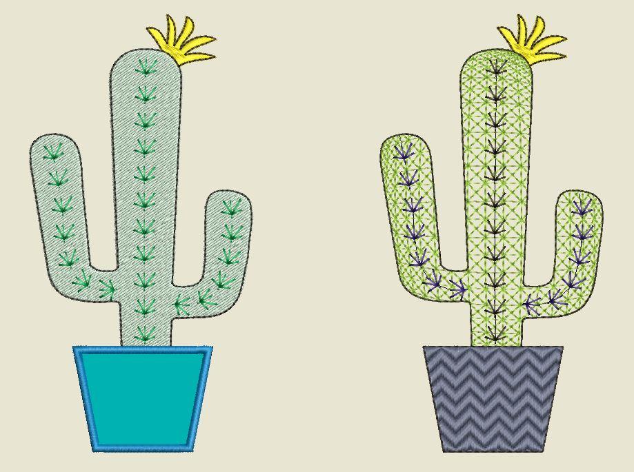 Kaktus 4 Vorher Nachher