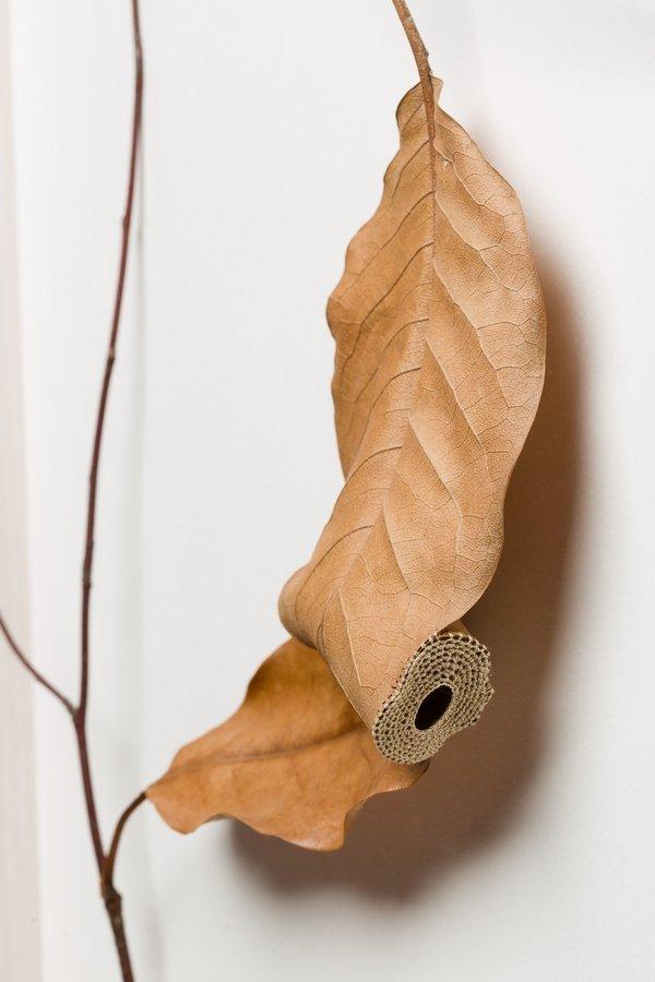 Susanna Bauer (England): Connect, Detail 2015, Magnolienblätter, Baumwollgarn 52 x 52 x 7 cm Foto: art-photographers.co.uk freundlicherweise vom Museum zur Verfügung gestellt