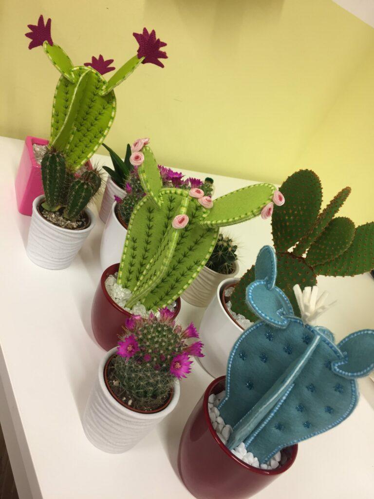 mein kleiner gr ner kaktus bernina blog. Black Bedroom Furniture Sets. Home Design Ideas