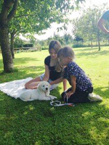meer tijd naaimachine puppy