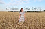 gratis patroon jurk zonnige zomerjurk